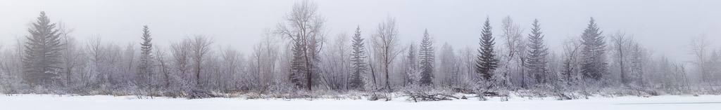 Bow River Island Winter Fog Panorama