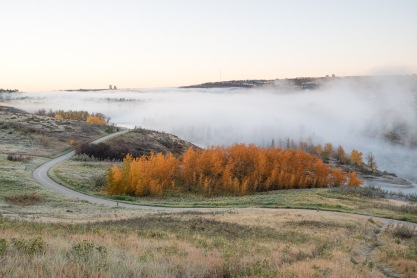 Bow River Valley Autumn Morning Fog