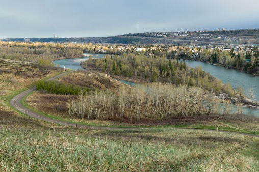 Bowmont Park and Bow River Spring Green