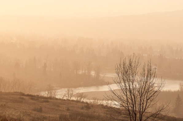 Bow River Valley Foggy Sunrise
